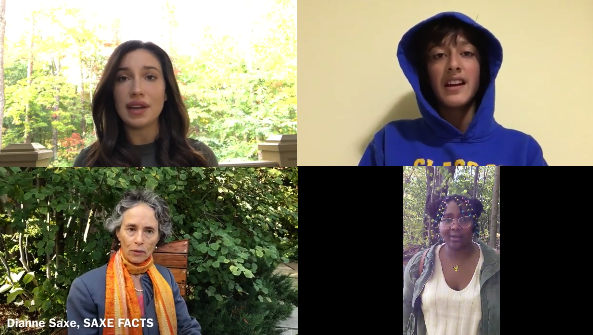 Climate Action Idea Videos by Youth and Climate Specialists