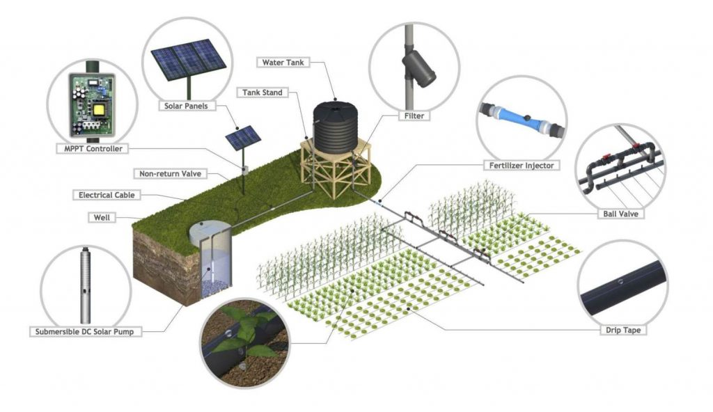 Example Solar-Powered Irrigation System. Courtesy of SunCulture.
